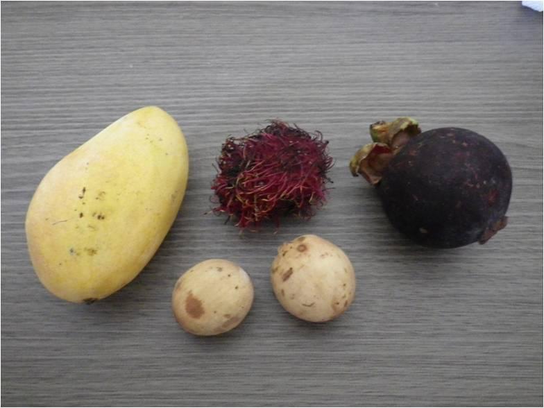 南国フルーツマンゴーランブータンマンゴスチンリュウガン