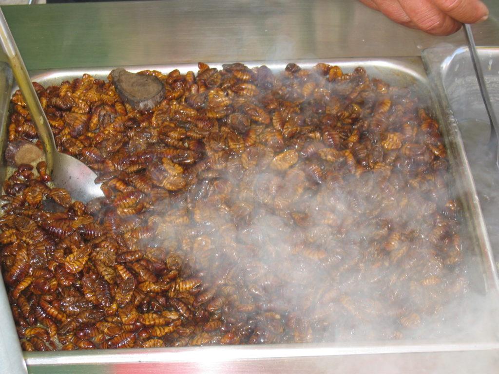 【韓国旅行のお土産にいかが?】韓国料理「ポンデギ」を食べてみた
